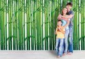 Papier peint photo - Papier - Forêt de bambous