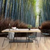 Fotobehang Colombo - Bamboegrot in Japan
