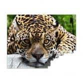 Fotopuzzle Jaguar