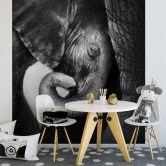 Fototapete - Das Elefantenbaby - 240x260 cm