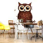 Fotomurale - Una civetta di caffè