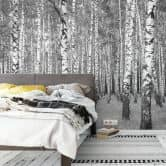 Photo wallpaper – Birch Forest