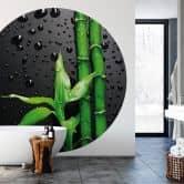 Fototapete Bamboo over Black - Rund