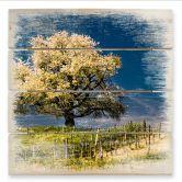Stampa su legno - Splendore floreale in aprile