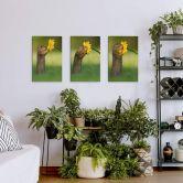 Leinwandbild van Duijn - Erdhörnchen (3er Set)