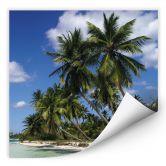 Wallprint W - Carribean Flair - quadratisch