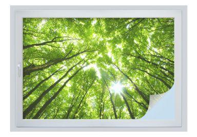 Sichtschutzfolien f r fenster und t ren wall for Fenster 60x90