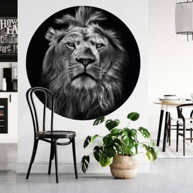 Fototapete - Lion - Rund