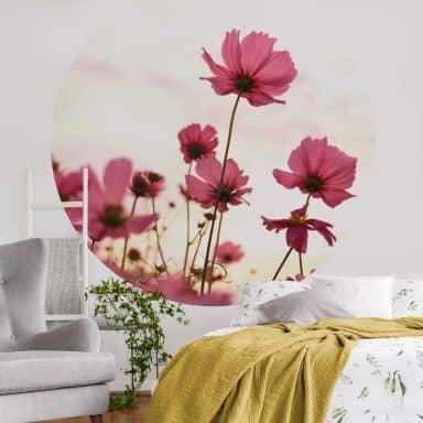 Photo Wallpaper Pink cosmos - Round