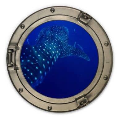 Holzbild 3D-Optik Bullauge - Der Walhai - Rund