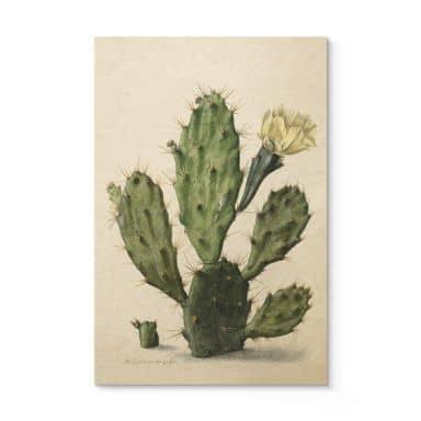 Houten Poster - Saftleven - Cactus