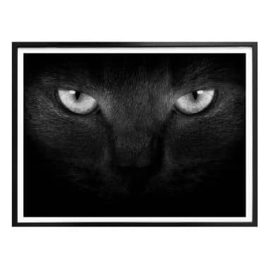 Poster Cat's Eyes - black and white