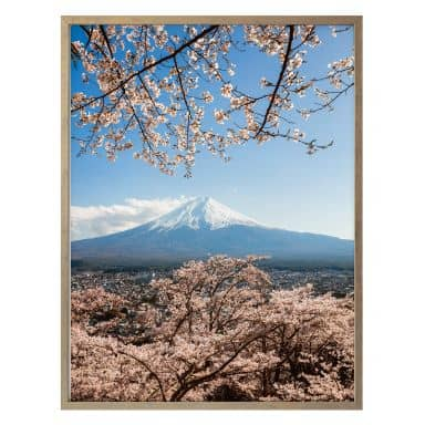 Poster Colombo - Mount Fuji in Japan