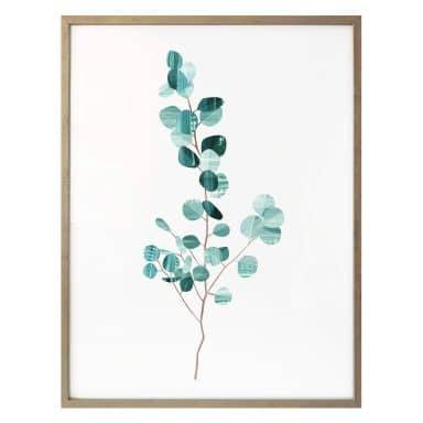 Poster Goed Blauw - Das Eukalyptusblatt