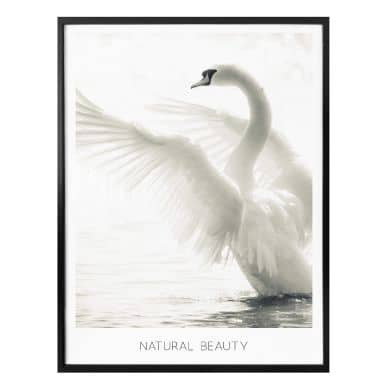 Poster Natural Beauty