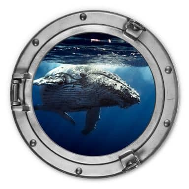 Alu-Dibond 3D-Optik Bullauge - Buckelwal auf Tauchgang - Rund