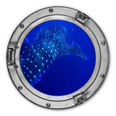 Alu-Dibond 3D-Optik Bullauge - Der Walhai - Rund