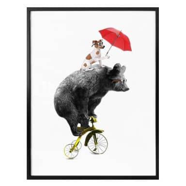 Poster Bicycling Bear
