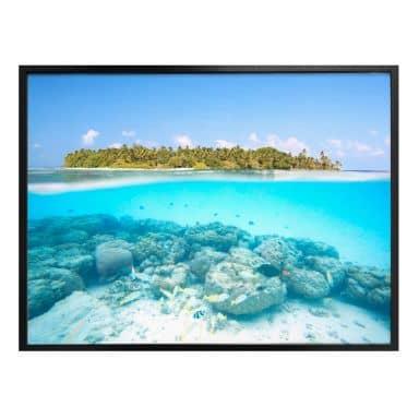 Poster Colombo - Unterwasserwelt der Malediven