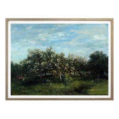 Poster Daubigny - Apfelblüte