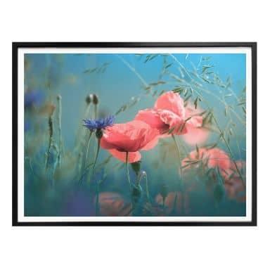 Poster Delgado - Wildblumen Aquamarin
