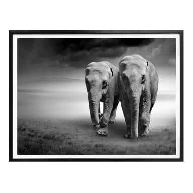 Poster elephants