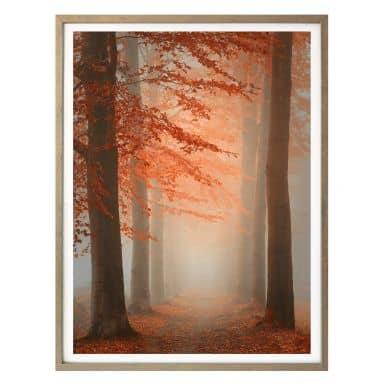 Poster Dingemans - Herbstträume