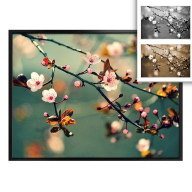 Poster Spring Awakening