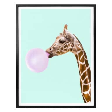 Poster Fuentes - Giraffe with Chewing Gum
