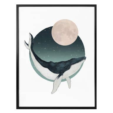 Poster Graves - Humpback