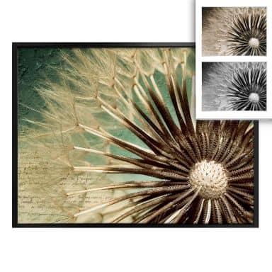 Poster dandelions poetry