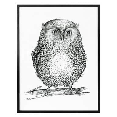 Poster Kvilis – Owl 02