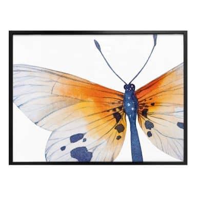 Poster Kvilis – Vlinder 02