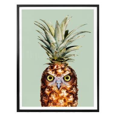 Poster Loose - Ananaseule