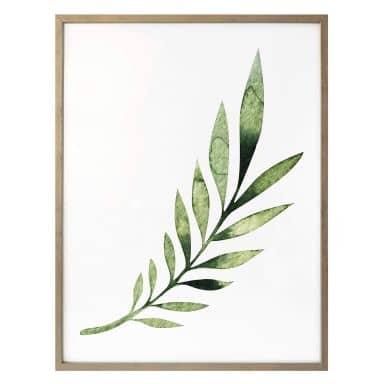 Affiche Kvilis - Feuille de palmier