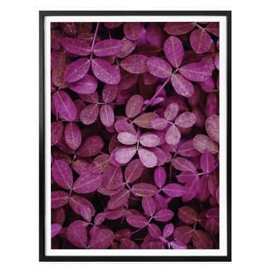 Poster - Feuilles roses