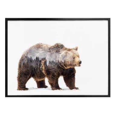 Poster Beáta - The Bear