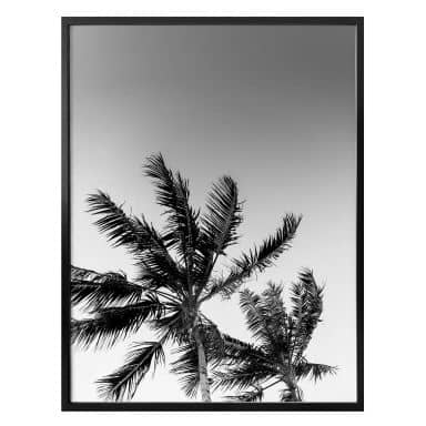 Poster Palmen im Sturm