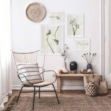 Poster set incl. frames - Ranunculus