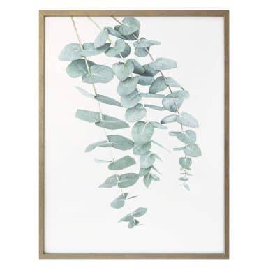 Poster Sisi & Seb - Eucalyptus