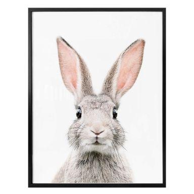 Poster Sisi & Seb - Hello Bunny