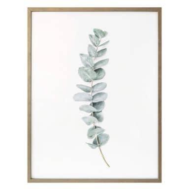 Poster Sisi & Seb -Eucalyptus
