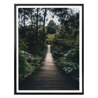 Poster Forest Road