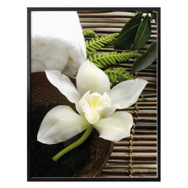 Poster wellness Orchid