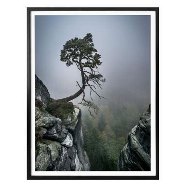 Poster Wonisch - Forza della natura