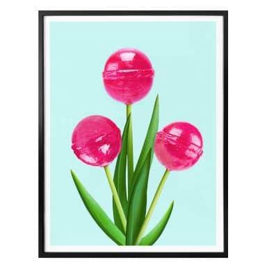Poster Fuentes - Lollipop Tulips