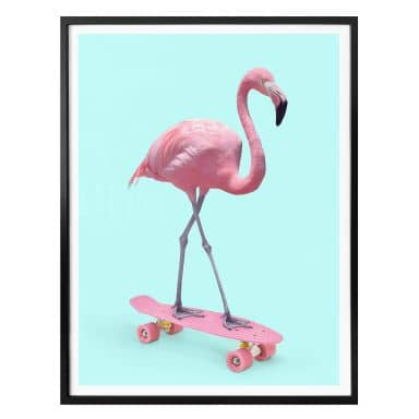 Poster Fuentes - Skate Flamingo