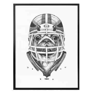 Poster Kools - American Pug Football
