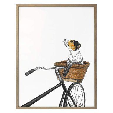 Poster Sparshott - Hund im Korb