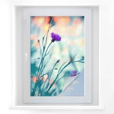 Sichtschutzfolie Bravin - Luminous purple